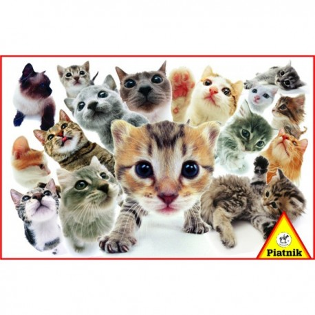 Puzzle Hanadeka Kočky 1000 dílků